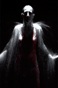 Bill Viola, Digital grab